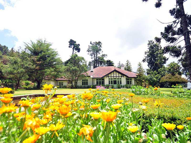 Hill Country Hotel Accommodation, Magical Isle Holidays, Sri Lanka
